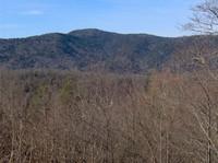 Mount Collins photo