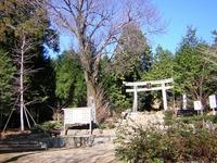 Mount Hongū photo