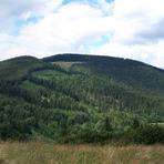 Kozubová