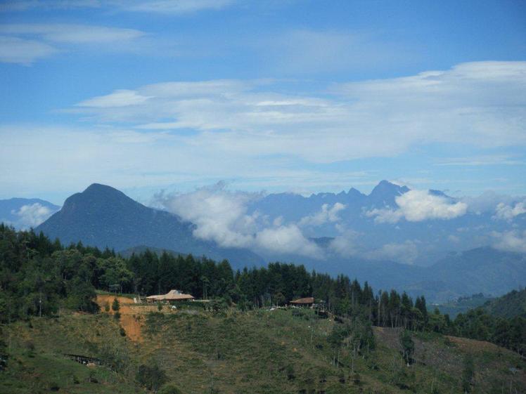 Cerro Bravo weather
