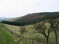 Housedon Hill photo