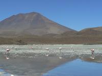Cerro Araral photo