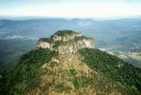 Mount Lindesay (Queensland) photo