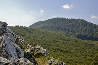 Vysoká (Carpathian mountain) photo