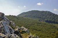 Vysoká (Carpathian mountain) photo