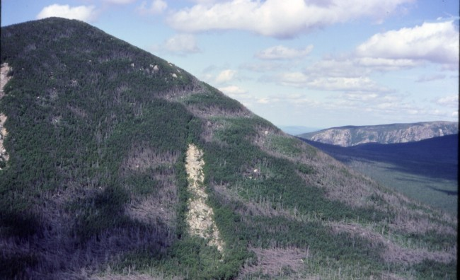 Mount Coe