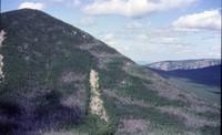 Mount Coe photo