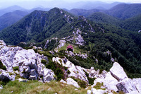Risnjak photo