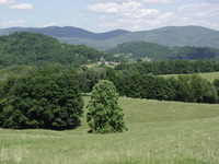 Laurel Mountain (West Virginia) photo