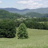 Laurel Mountain (West Virginia)