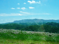 Black Mountain (Kentucky) photo
