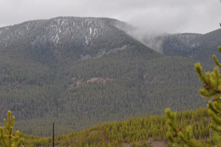 Purple Mountain (Wyoming) weather