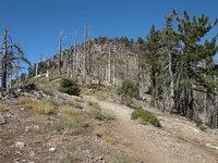 Mount Islip photo