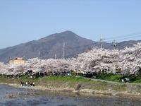 Mount Hiei photo