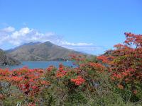 Mount Panie photo