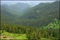 Bohemia Mountain photo