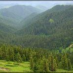 Bohemia Mountain