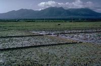 Pocdol Mountains photo