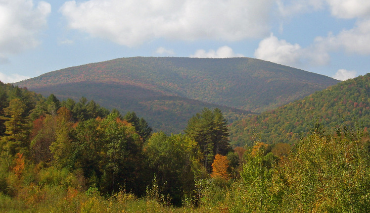 Balsam mountain ulster county new york mountain photo for Balsam mountain