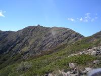 Mount Buller (mountain) photo