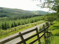 Slieve Bloom Mountains photo