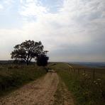 Walbury Hill