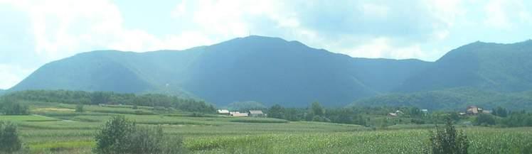 Ivanscica