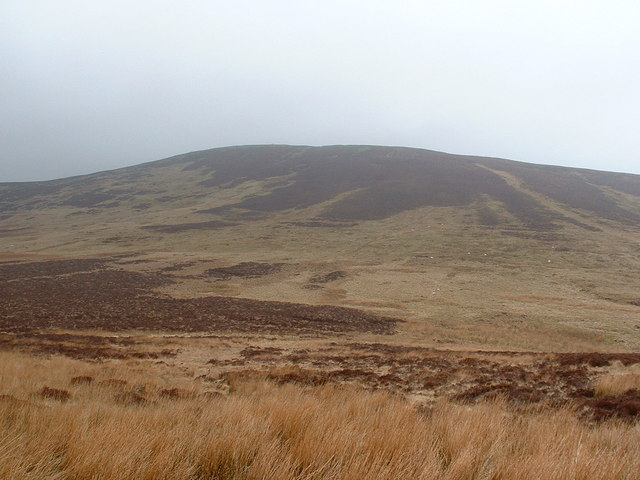 Foel y Geifr weather