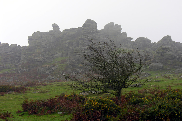 Hound Tor weather