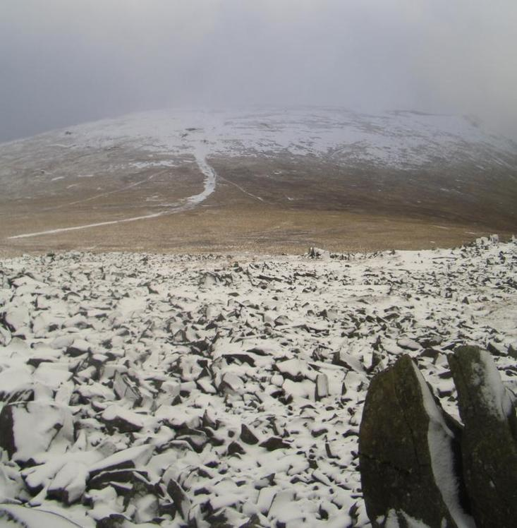 Foel Grach weather