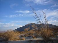 Coyote Mountain (California) photo