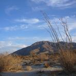Coyote Mountain (California)