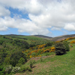 Snaefell