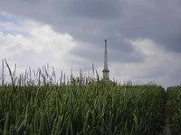 Rowley's Hill photo