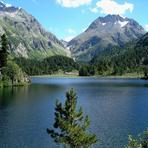 Monte del Forno