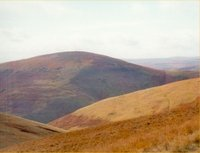 Shillhope Law photo