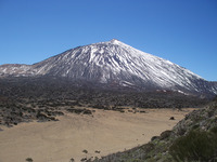 El Tiede Tenerife photo