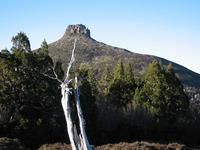 Mount Pelion East photo