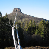 Mount Pelion East