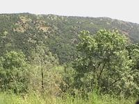 Mount Sizer photo