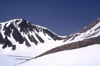 Mount Dana photo