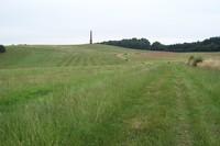 Wychbury Hill photo