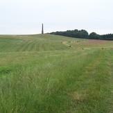 Wychbury Hill