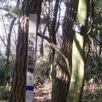Mount Iwahara
