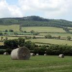 Arklow Hill