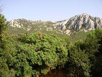 Mont Faron photo