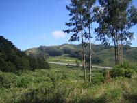 San Bruno Mountain photo