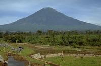 Mount Sundoro photo