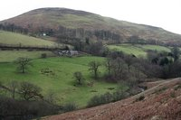 Ling Fell photo