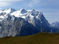 Mittelhorn photo